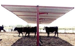 cowshade
