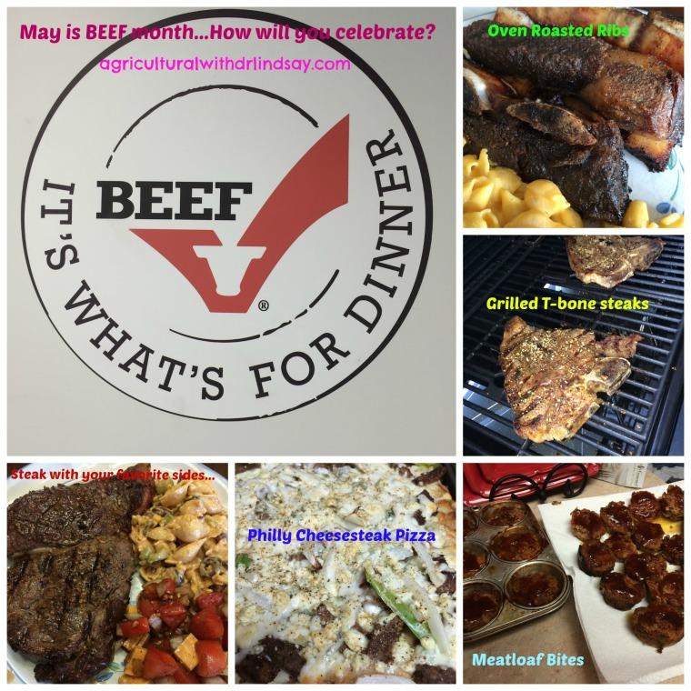 Beef pics_logo