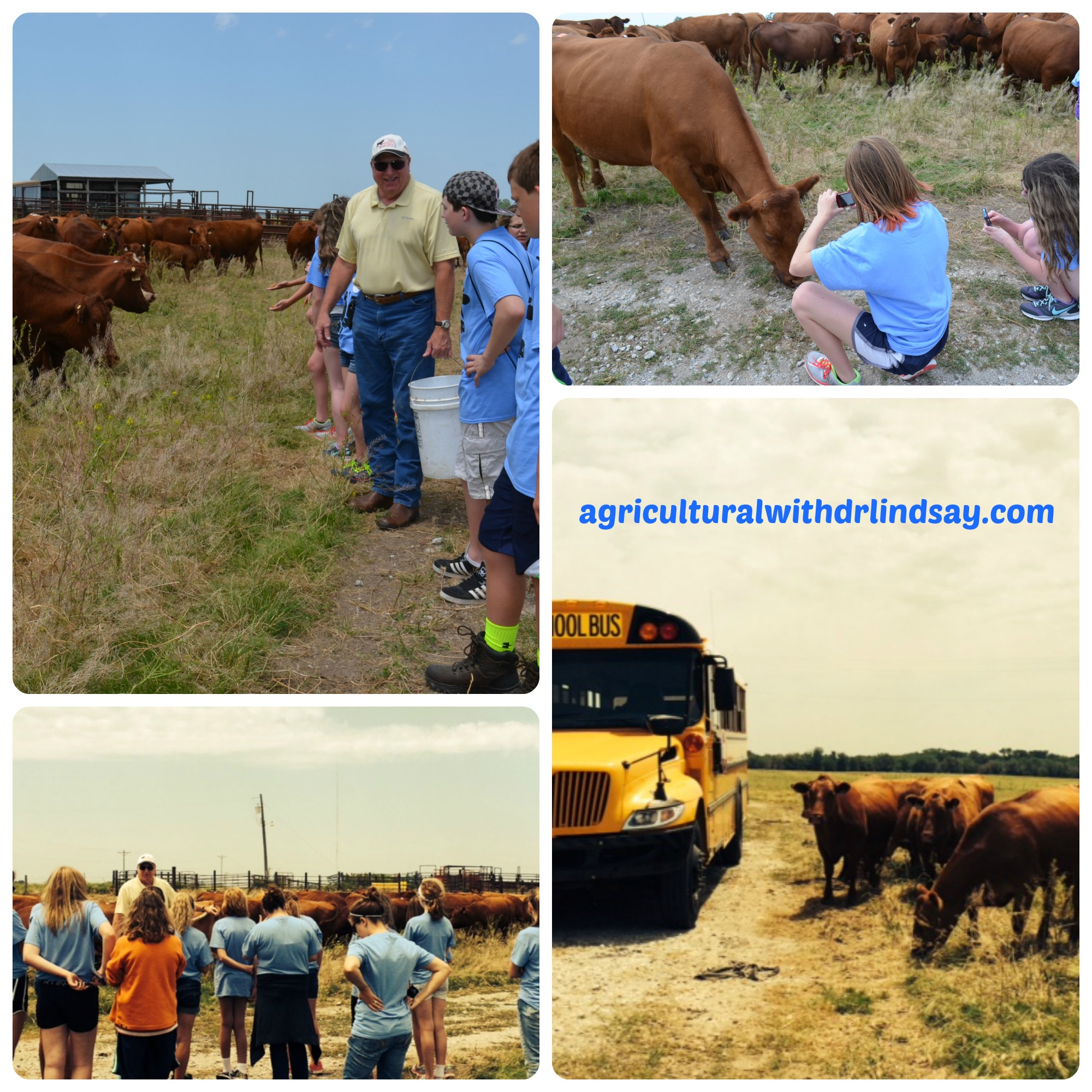 Anatomy and Physiology – Agricultural with Dr. Lindsay