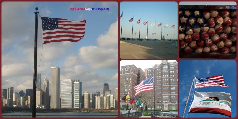 flags_final