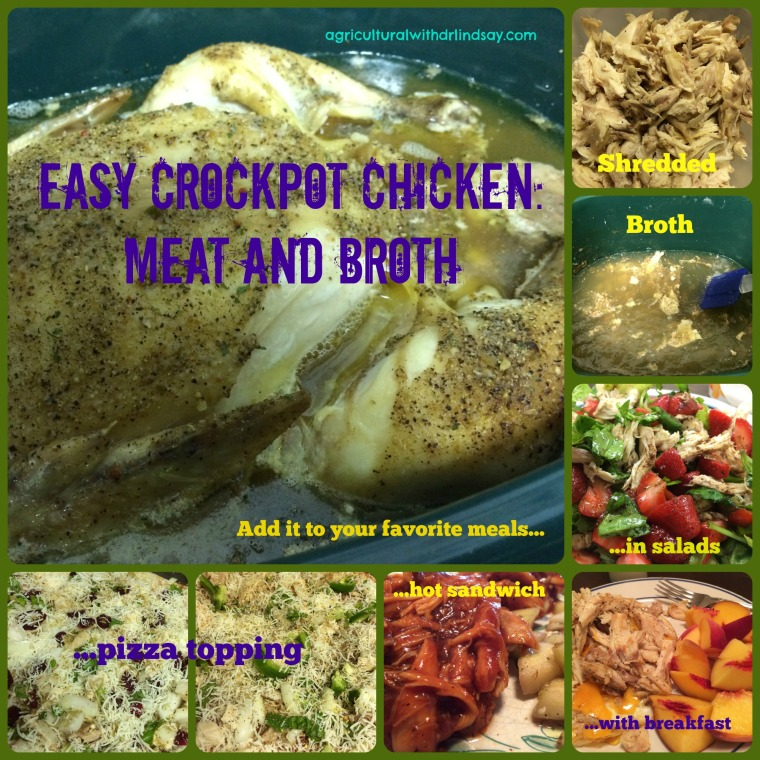 Crockpot chicken_final