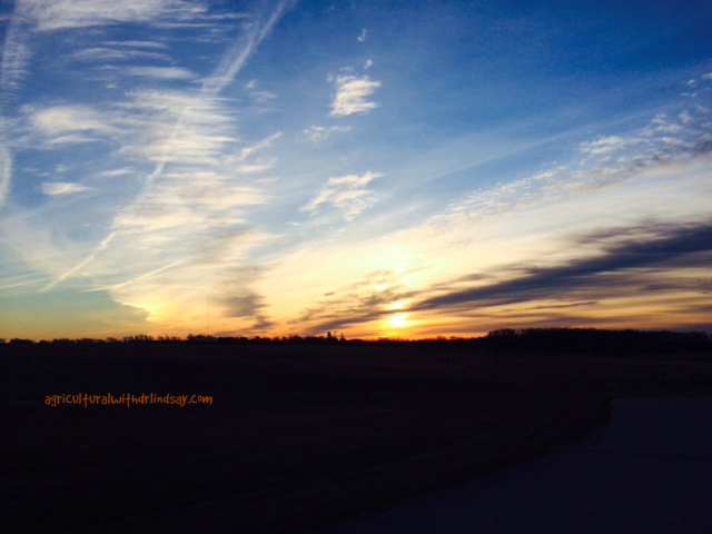 sunrise--final