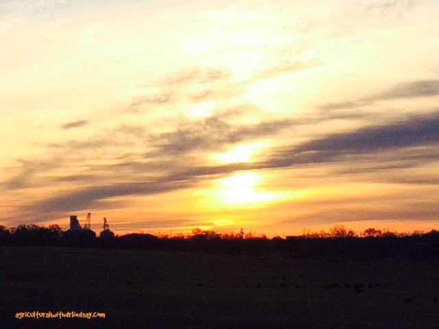 sunrise-final