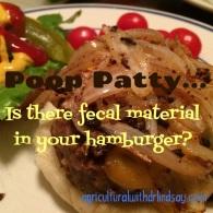 Poop patty