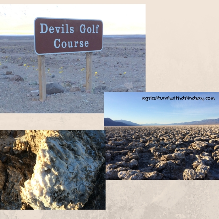 Devils Golf Course